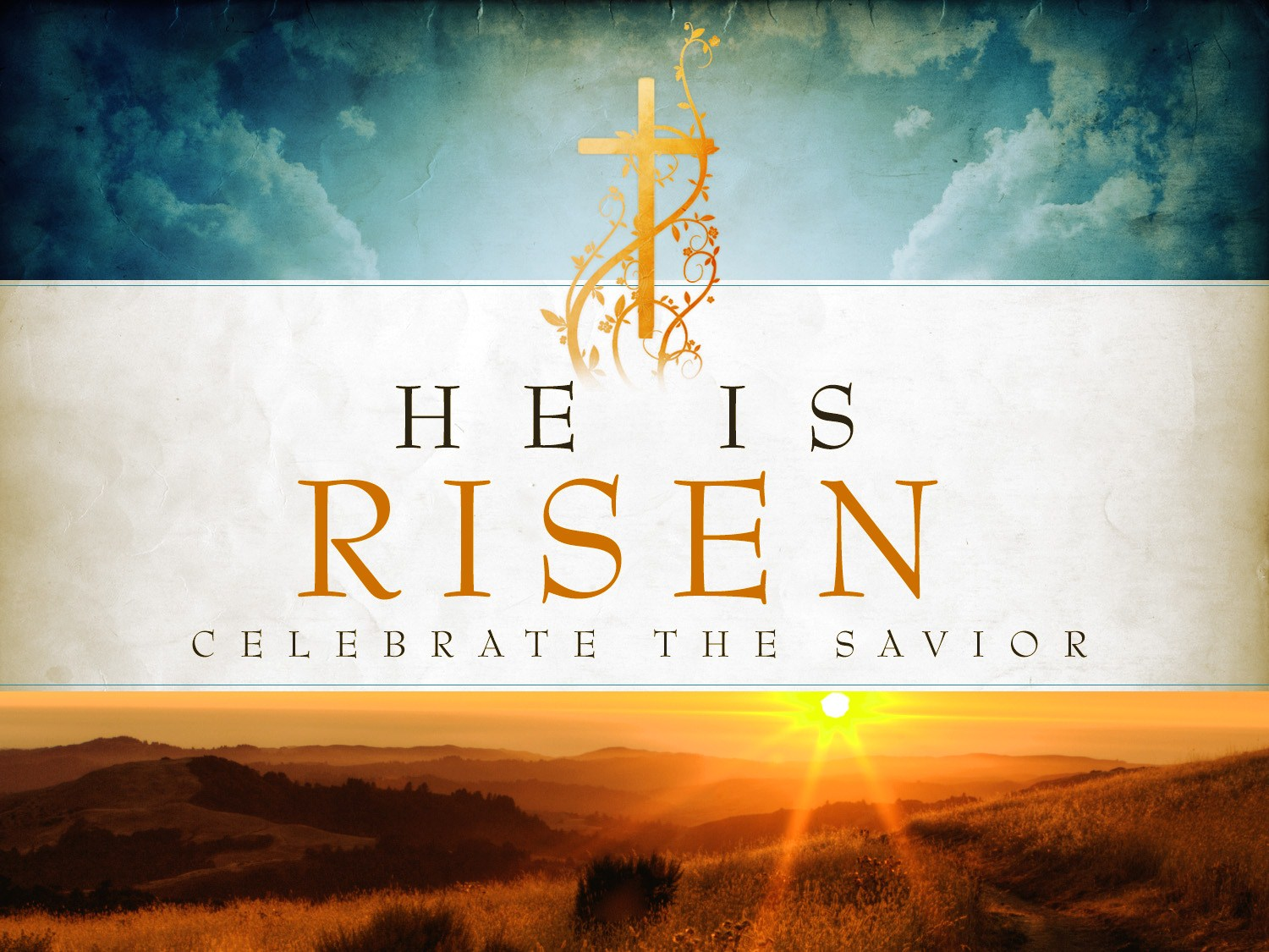 Bible Study Guide For Easter 4 12 2020